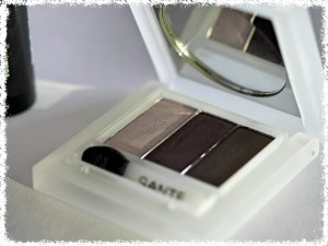 Palette fards à paupières_Sante Naturkosmetik_maquillage_joly-beauty.com/blog/