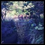 jardins jardin_horticulture et jardin_joly-beauty.com