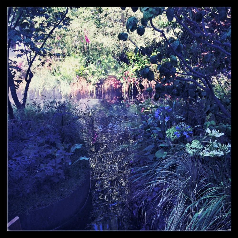 Jardins jardin 2015 joly beauty for Jardin wilson